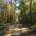 Fall in love with Amish Country